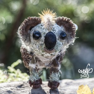 15-creature-nature-carre-koala03